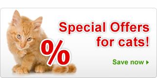 Spesialtilbud: Katteutstyr & tilbehør