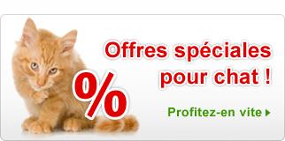 Promotions nourriture et accessoires pour chat