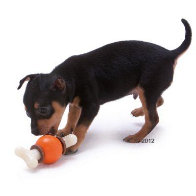 Active Bone gioco snack per cani