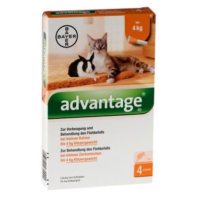 Advantage® für Katzen und Zierkaninchen