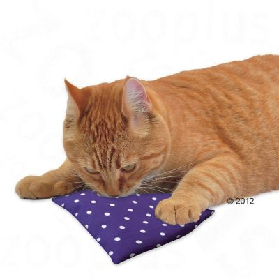 Aum 252 Ller Baldini Valerian Pillow Great Deals At Zooplus