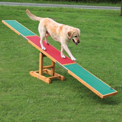 Bascula Agility Dog