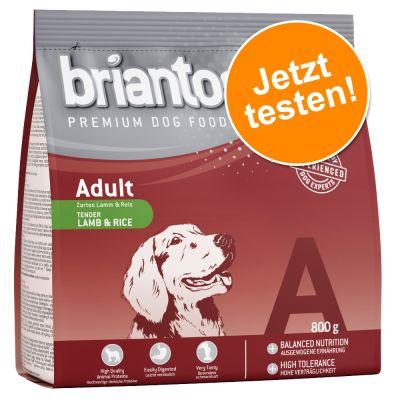 Briantos Adult Lamm & Reis - zum Probierpreis!