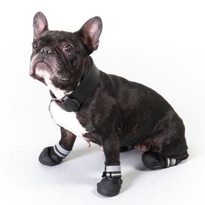 Buty dla psa S & P Boots