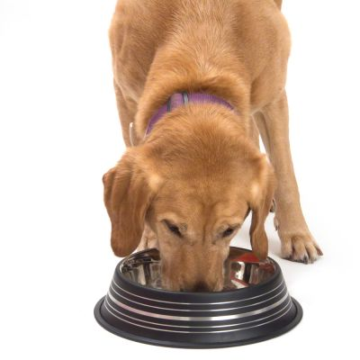 Ciotola in acciaio Silver Line per cani nero opaco