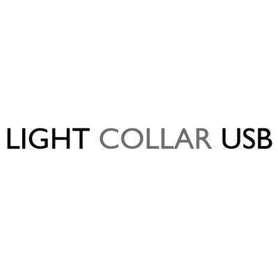 Collare luminoso a LED Eyenimal - blu