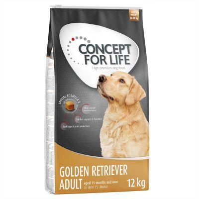 Concept for Life Golden Retriever Adult