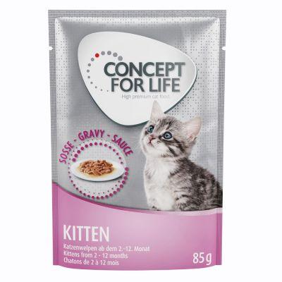 Concept for Life Kitten - in salsa