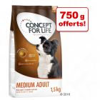 Concept for Life pour chien : 750 g + 750 g offerts !
