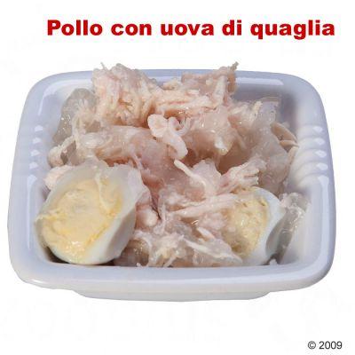 Cosma Glory in gelatina misto 170 g