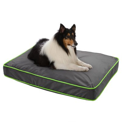 technicolor coussin pour chien zooplus. Black Bedroom Furniture Sets. Home Design Ideas