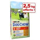 Croquettes Purina Dog Chow 14 kg + 2,5 kg offerts !