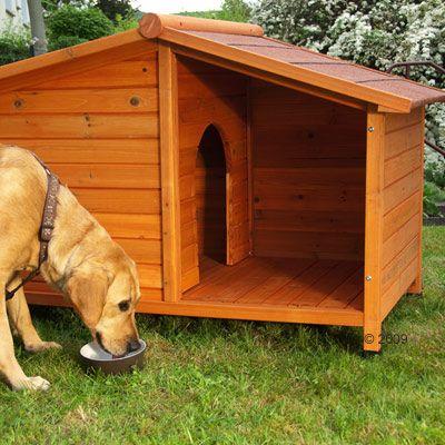 Cuccia per cani Spike Special