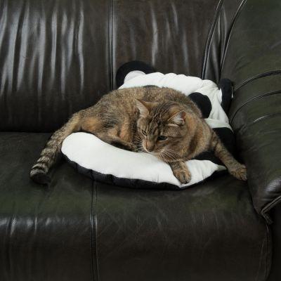 Cuscino Pandi l'Orsetto