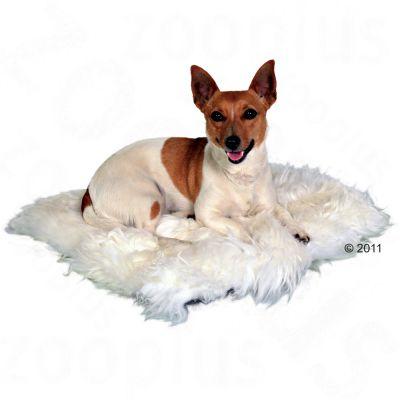 Cuscino Trixie in pelo di montone