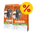 Dubbelpack: IAMS Pro Active Health Adult Lamb & Chicken