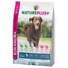 Eukanuba NaturePlus+ Adult Large Dog, saumon