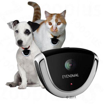 Eyenimal Pet Camera