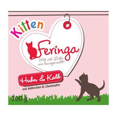 Feringa Kitten pack de iniciación + almohaditas