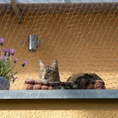 Filet de protection avec renfort en fil de fer pour chat