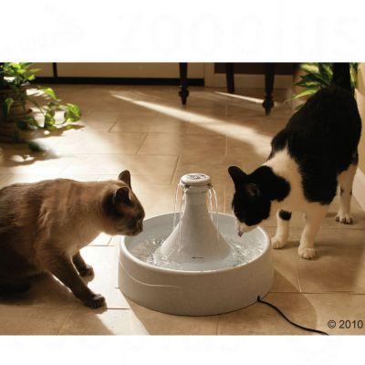 Fontaine à eau Drinkwell 360 3,8 L pour chien et chat
