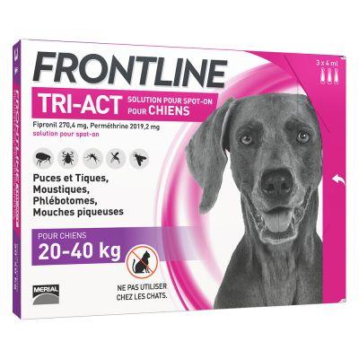 bravecto effets secondaires jeune chien