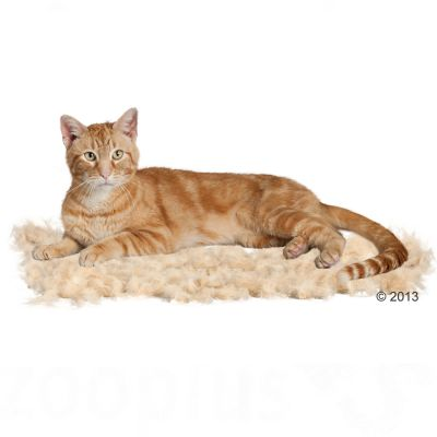 FURminator deShedding escarpidor para gatos