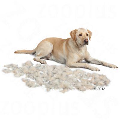 FURminator L pelo corto per cani