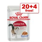 85g Royal Canin Wet Cat Food - 20 + 4 Free!*