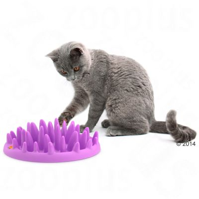 Gamelle Karlie Flamingo NORTHMATE ® Catch pour chat