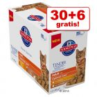30 + 6 gratis! 36 x 85 g Hill's Science Plan Adult
