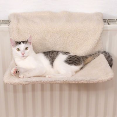 relax pour chat