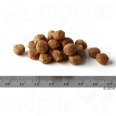 Hill's Canine Adult Perfect Weight Mini - Kip