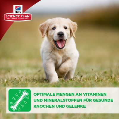 Hill's Canine Puppy Huhn Hundefutter