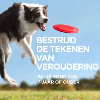 Hill's Canine 5+ Youthful Vitality Large Breed met Kip & Rijst Hondenvoer