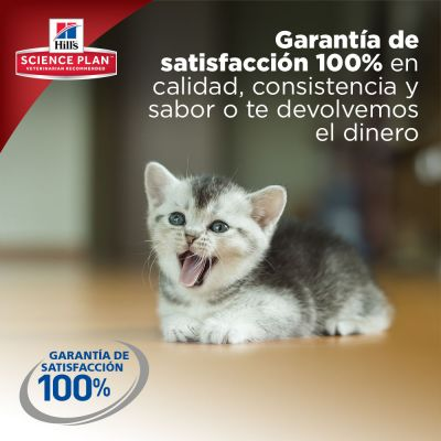 Hill's Kitten Healthy Development con pollo para gatitos