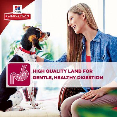 Hill's Science Plan Adult Advanced Fitness Medium - Lamb & Rice