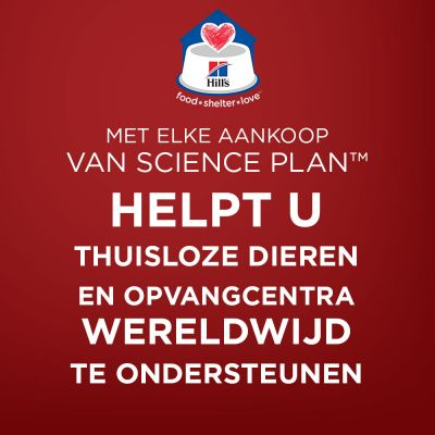 Hill's Science Plan Mature 7+ Active Longevity - Lam & Rijst