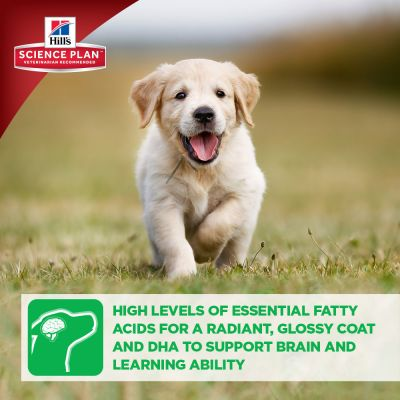 Hill's Science Plan Puppy Healthy Development Lamb & Rice