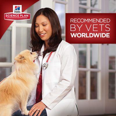 Hill's Science Plan Puppy Healthy Development Mini - Chicken