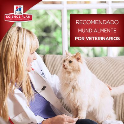 Hill's Young Adult Sterilised Cat con pollo para gatos