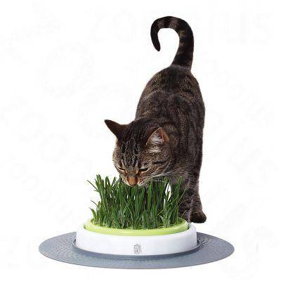 Jardin d'herbe pour chat Catit Design Senses