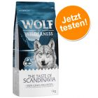Jetzt testen: 1 kg Wolf of Wilderness Adult