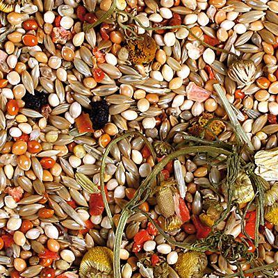 JR Farm Individual per cocorite