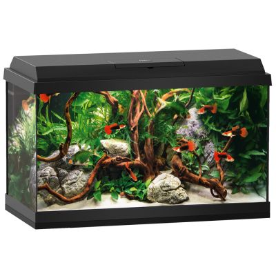 juwel aquarium voordelig bij zooplus juwel aquarium primo led startset 60. Black Bedroom Furniture Sets. Home Design Ideas