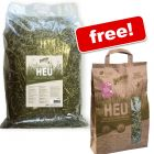 2.7kg Bunny Hay from Protected Meadows + 250g Free!*