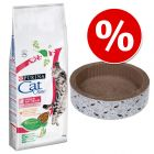 15 kg Purina Cat Chow + Circle drapak w super cenie!