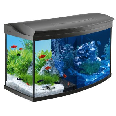 Tetra aquaart evolution line led 100 l kit aquarium for Achat aquarium complet