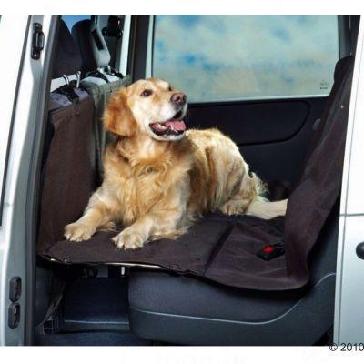 Bridge Dog Car Seat Cover