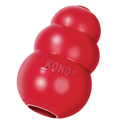 Best Price Kong Dog Toys